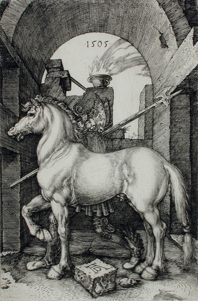 Albrecht Dürer Small Horse